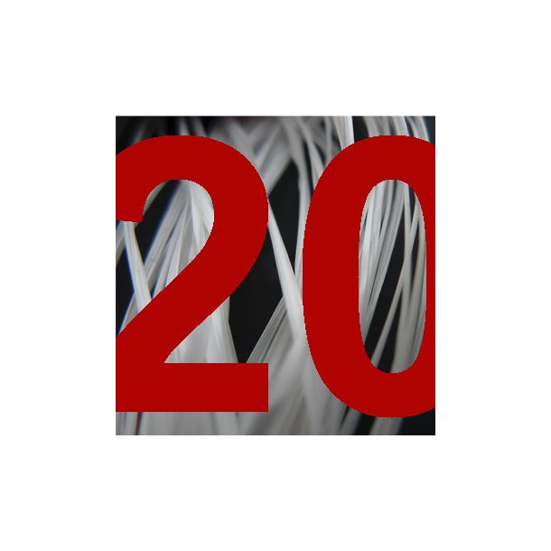 8520 Forny medlemskab 2020